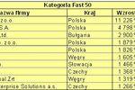 Polskie spółki najlepsze w Europie Środkowej 2007