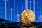 Bitcoin, srebro czy ziemia? Zobacz w co inwestować