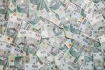 ZPP krytykuje budżet państwa. Założenia są zbyt optymistyczne