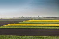 Gdyby nie ograniczony obrót ziemią, grunty rolne byłyby znacznie droższe