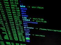 Hakerzy wciąż nękają polskie sieci firmowe i administracyjne