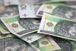 Dług publiczny: jak bardzo zadłużony jest Skarb Państwa?