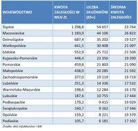 Zadłużenie seniorów w podziale na województwa