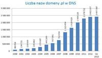 Liczba nazw domeny pl. w DNS