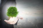 Działalność gospodarcza a ochrona środowiska