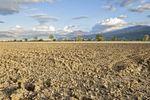 Działka rolna – kiedy możemy uzyskać warunki zabudowy?