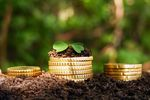 Jak inwestować, gdy banki nie chcą naszych pieniędzy?