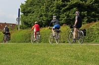 Czy Polacy chętnie jeżdżą na rowerze?