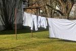 UOKiK: najlepsze proszki do prania białych tkanin