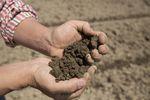 Czy rolnicy są skazani na banki spółdzielcze?