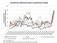 Popularność wybranych haseł w wyszukiwarce Google