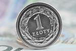Co wpłynie na kursy walut i złotego w 2021 roku?