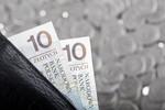 Stabilność finansowa konsumentów 2012
