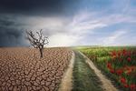 Dzień długu ekologicznego: czy obchodzą nas zmiany klimatyczne?