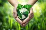 KPMG: zielone obligacje szansą dla polskich samorządów