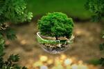 Zrównoważony rozwój priorytetem branży technologicznej