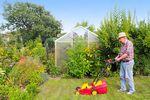 Rodzinne Ogródki Działkowe z opłatami