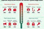 Keylogger - największy postrach internautów?