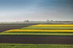 Sprzedaż gruntu rolnego z podatkiem dochodowym?