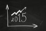Polska gospodarka 2015 okiem Lewiatana