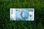 W banku, u teściów i na zeszyt, czyli pożyczki po polsku