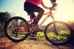 Rower trekkingowy, miejski czy górski? Polacy na 2 kółkach