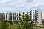 Ukraińcy a rynek mieszkaniowy w Polsce