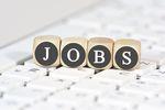 Oferty pracy 2019: kto szukał pracowników?