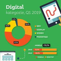 Udział poszczególnych kategorii reklamy w wydatkach na reklamę digital w  I kw. 2019 r.