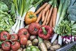 GUS: spadają ceny produktów rolnych