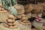 GUS: w sierpniu ceny produktów rolnych niższe o ponad 5%, ziemniaki staniały o ponad 40%
