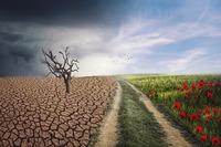 Zmiany klimatyczne są palącym problemem
