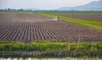 Od gruntów rolnych nie trzeba płacić podatku dochodowego