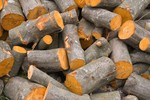 Ryczałt ewidencjonowany na sprzedaż drewna opałowego