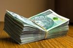 Subwencje z Tarczy Finansowej 2.0. Jak otrzymać? Na co wydać?