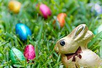 Dzieci we Francji szukają czekoladowych jajek