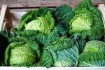 Umowa na dostawę produktów rolnych. Jak powinna wyglądać?