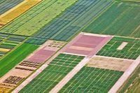 Ośrodki produkcji rolniczej, czyli PGR od nowa?