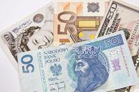 Jakie kursy walut?
