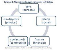 Schemat 1. Pięć najważniejszych elementów well-beingu