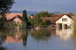 Globalne firmy zagrożone przez powodzie i susze