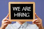 17% pracodawców planuje rekrutację pracowników