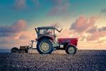 Grunty rolne nie uległy pandemii. Ceny wyższe niż rok temu